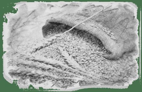 Белковое сырье