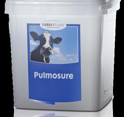 Пульмошур (Pulmosure) — для лечения и профилактики респираторных заболеваний