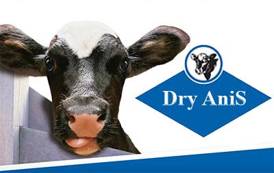 Премикс Драй Анис для сухостойных коров с анионными солями